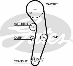 Gates K055569xs Timing Belt Set